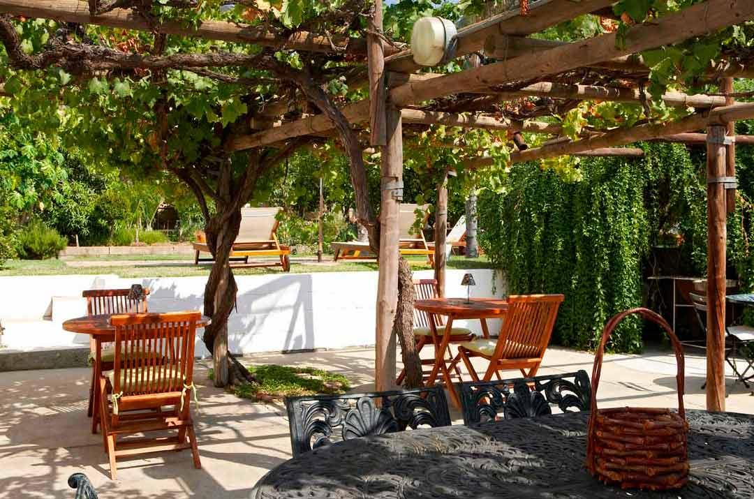 Ndedema-tea-garden